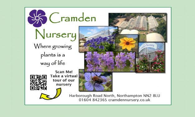 Cramden Nursery