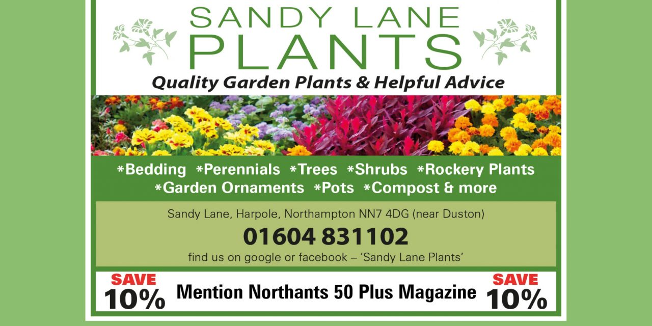 Sandy Lane Plants