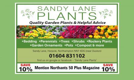 Sandy Lane Plants
